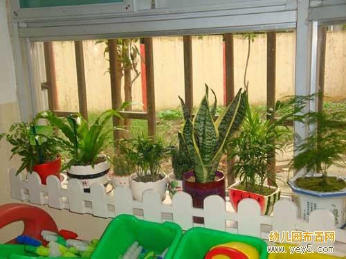 幼儿园小小班区角布置:漂亮的自然角长廊